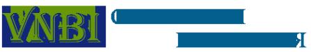 Логотип компании VNBI IT АУТСОРСИНГ