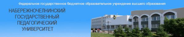 Логотип компании Набережночелнинский государственный педагогический университет