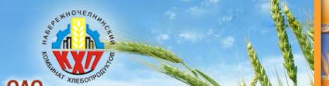 Логотип компании Набережночелнинский комбинат хлебопродуктов