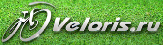 Логотип компании Veloris