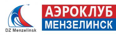 Логотип компании ДЗ Мензелинск