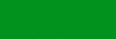 Логотип компании Лучъ